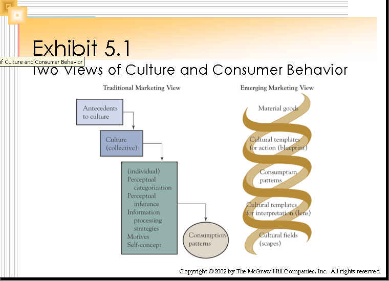 consumers elearning session exhibit 5 1 two views of culture and consumer behavior 50 0k
